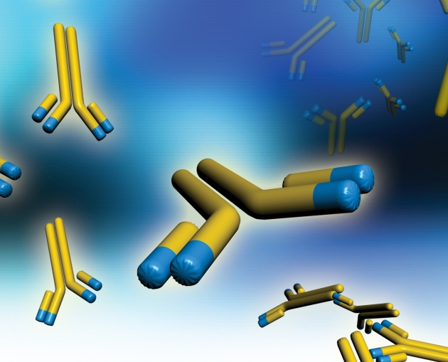 AFFI-MAB™ BEADS FOR MONOCLONAL ANTIBODY PURIFICATION